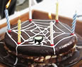 Birthday cake - Spider webb cake